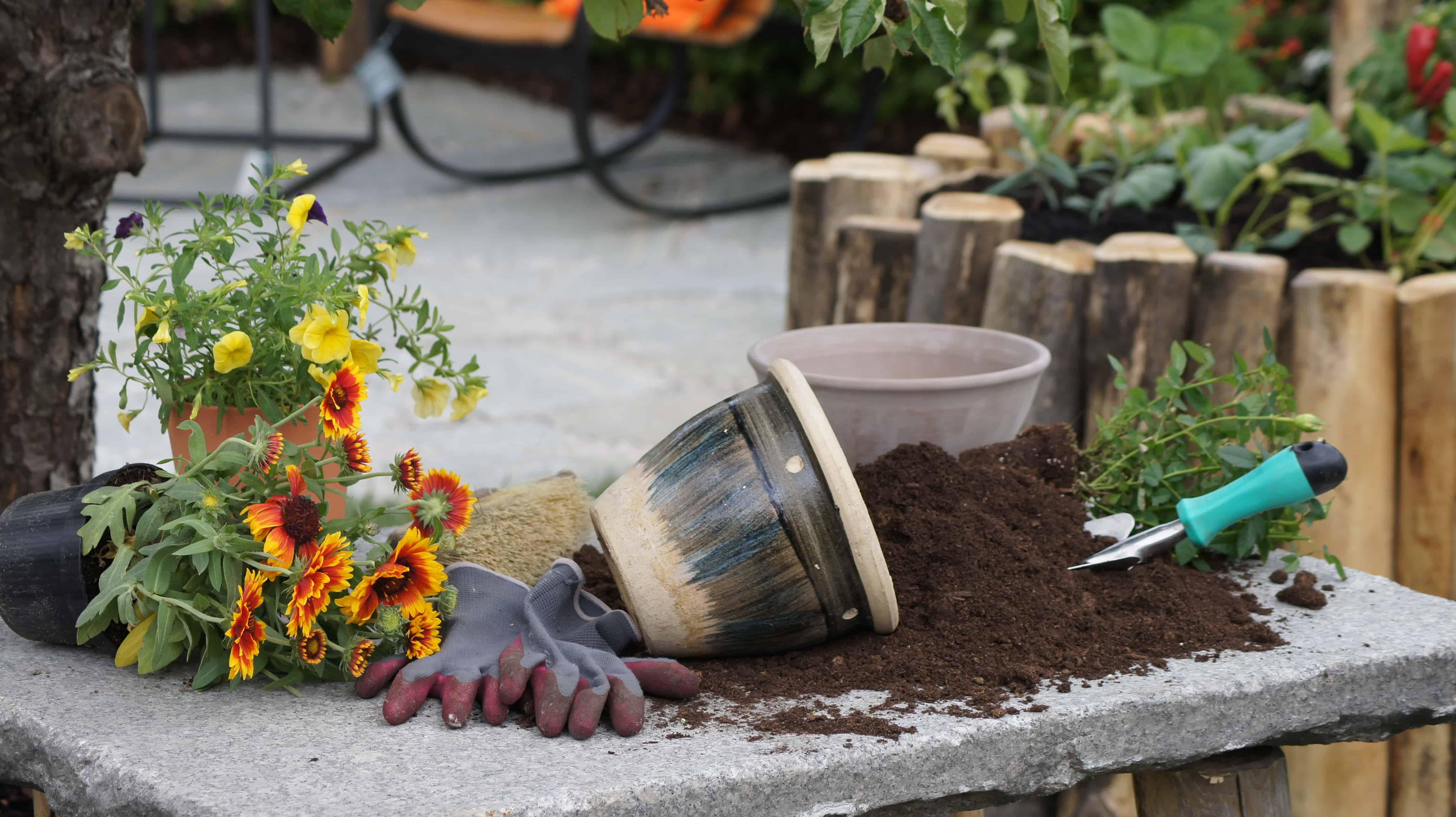Schlierseer Gartenzauber 2018 - Judith Weber (2)