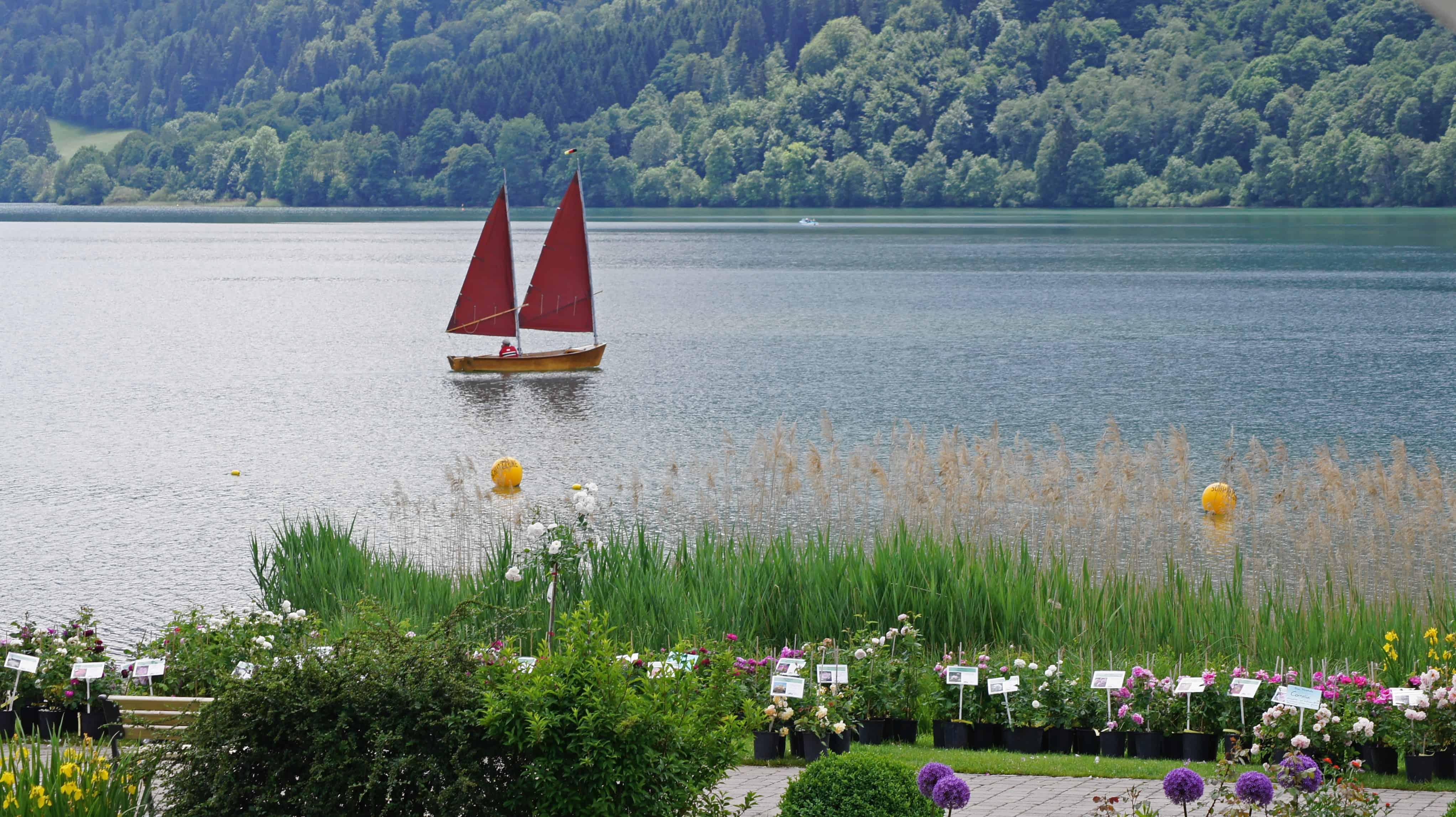 Schlierseer Gartenzauber 2018 - Judith Weber (22)