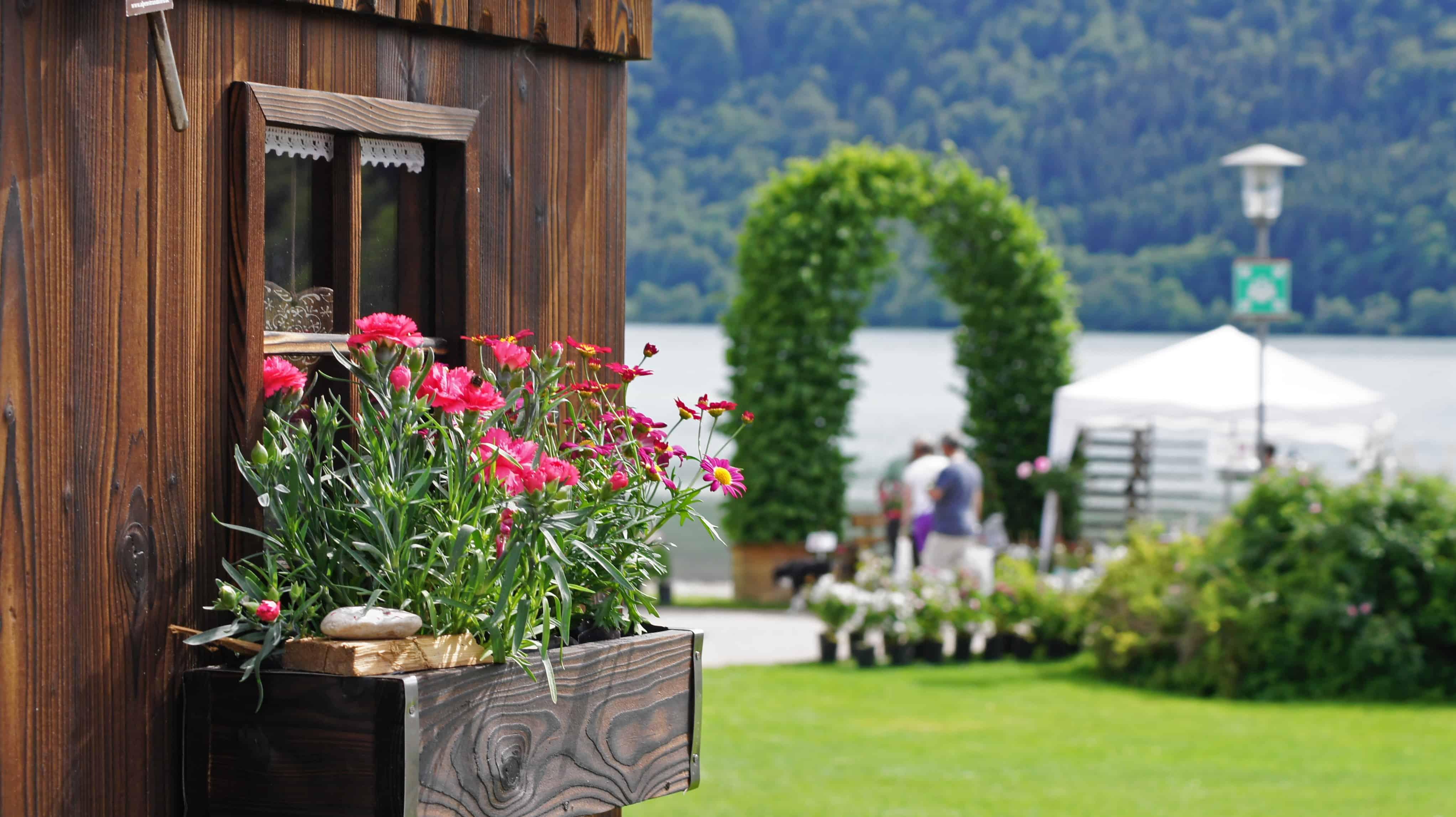Schlierseer Gartenzauber 2018 - Judith Weber (44)