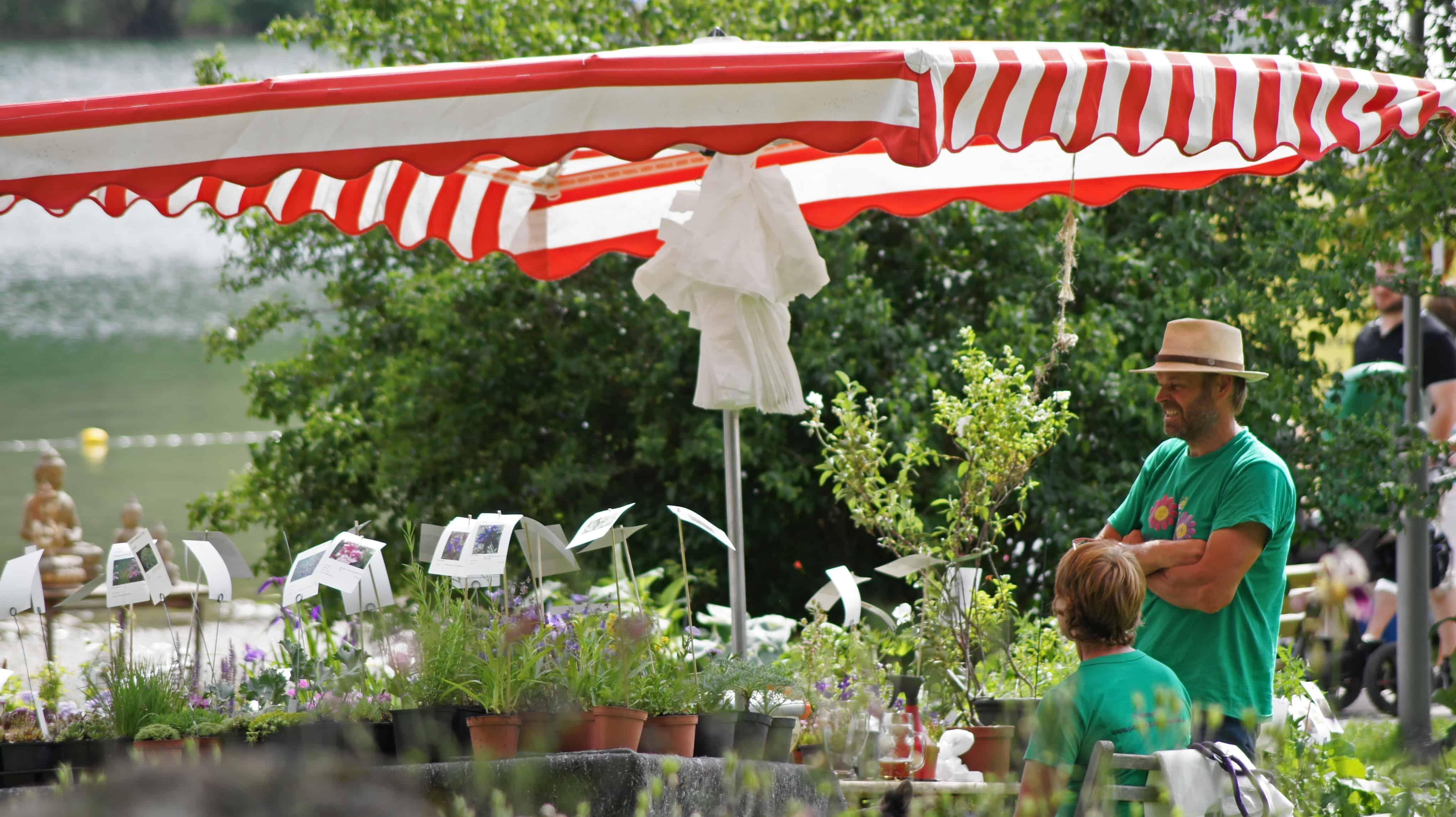 Schlierseer Gartenzauber 2018 - Judith Weber (48)