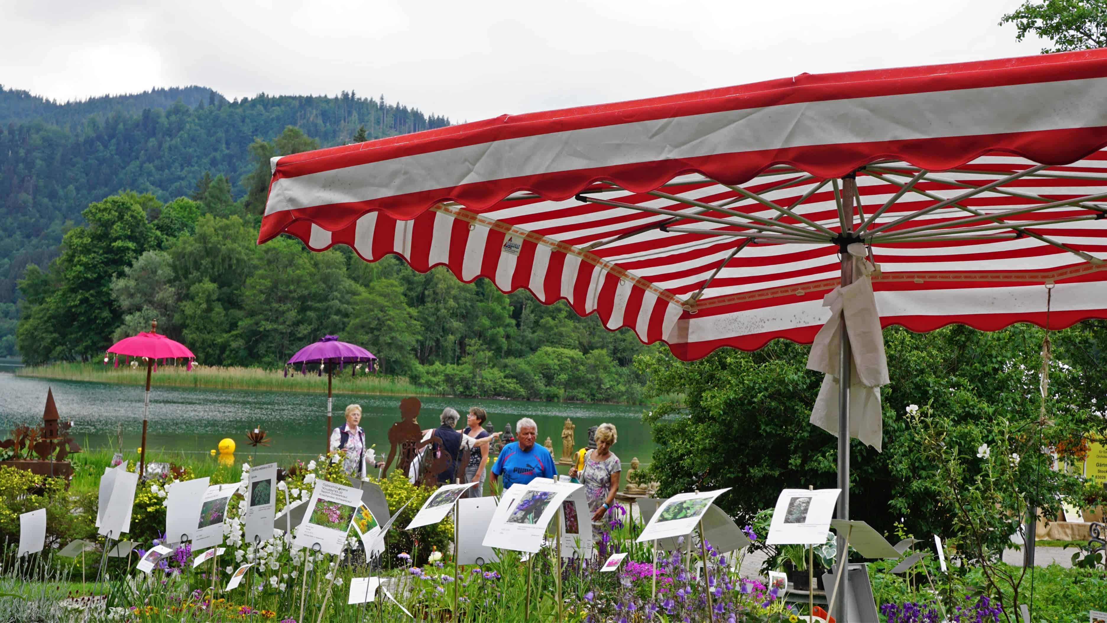 Schlierseer Gartenzauber 2018 - Judith Weber (60)